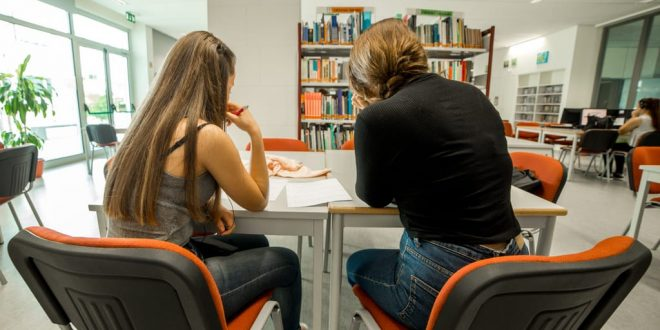 Município de Olhão atribui bolsas de estudo aos alunos do ensino superior